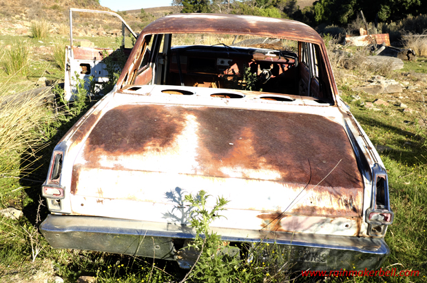 Rusted Cars, Classic Cars